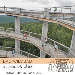bad wilbad-100