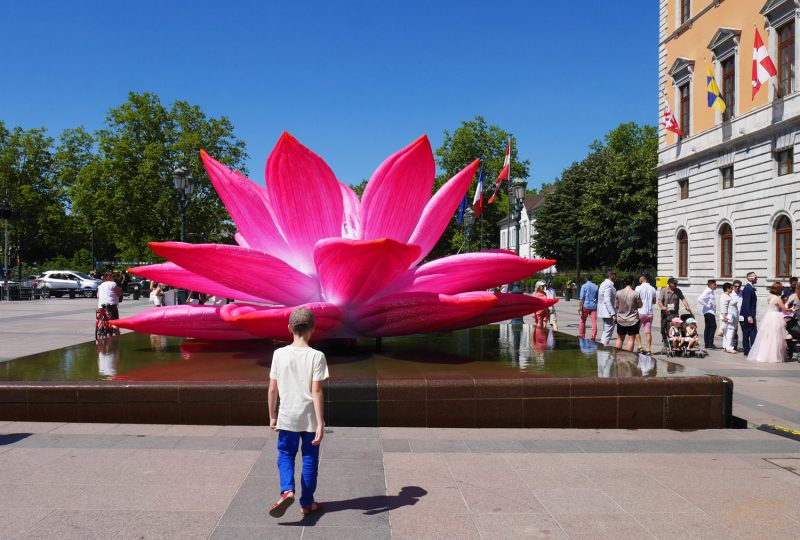 hôtel de ville annecy breathing lotus flower Choi Jeong Hwa art contemporain